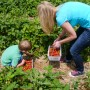 educational farm