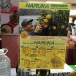 An extraordinary fair of Japanese food and product from Hiroshima
