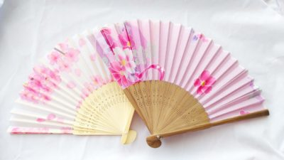 Stylish Japanese folding fan (sensu) and uchiwa