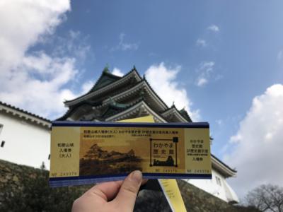 ticket and wakayama castle