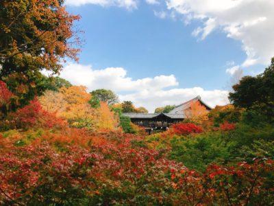 東福寺内の紅葉