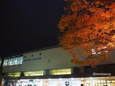 Tottori station