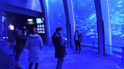 Taking pictures in front of the large aquarium