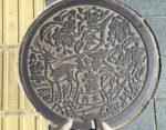 Nara manhole cover